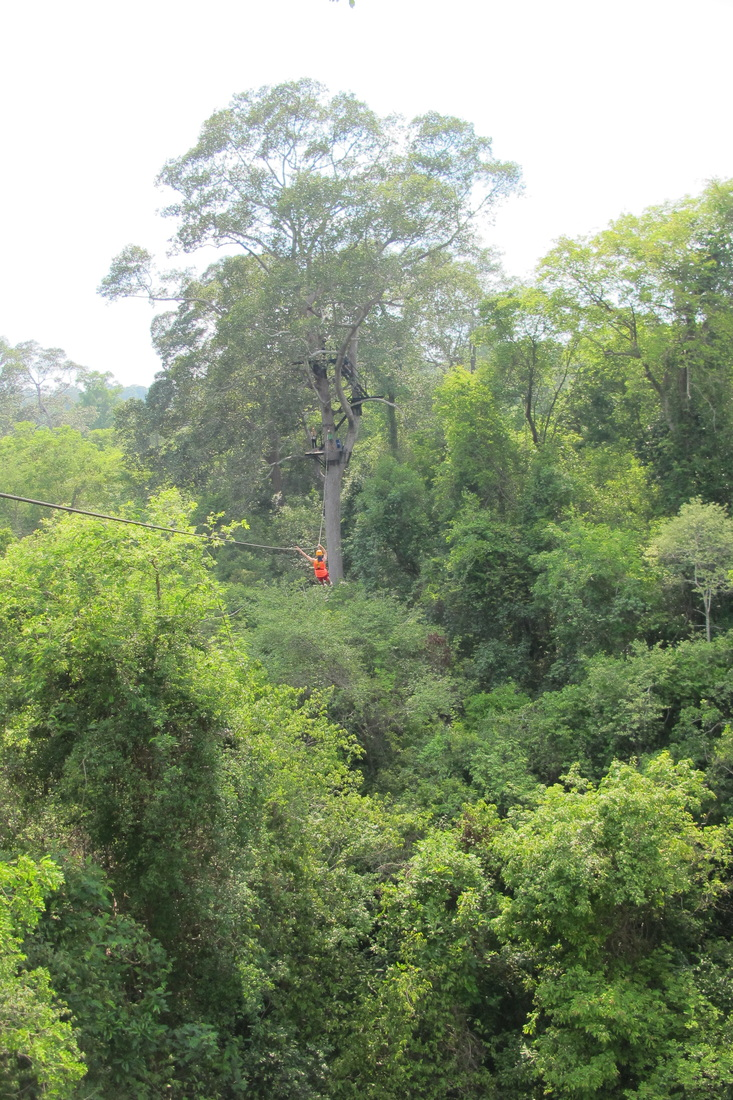 cambodia, siem reap, angkor wat, sikh, travel, zipline, flight of the gibbons