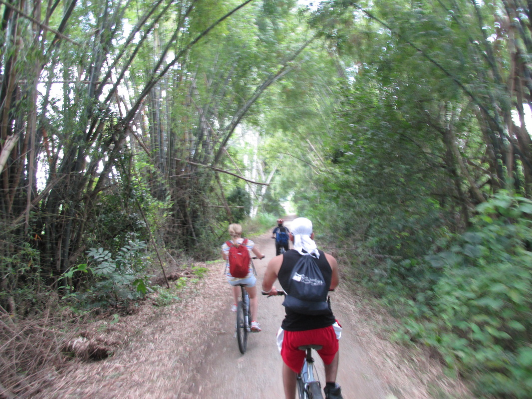 thailand, travel, south east asia, sikh, singh, chiang mai, cycling tour