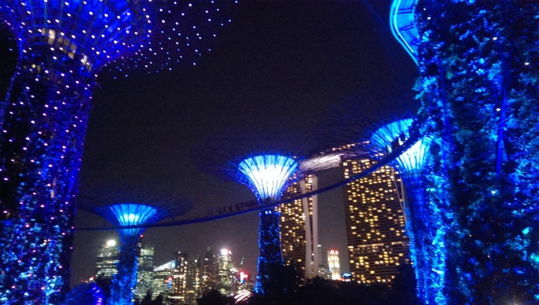 cloud forest, super tree grove, marina bay sands, singapore, travel, sikh